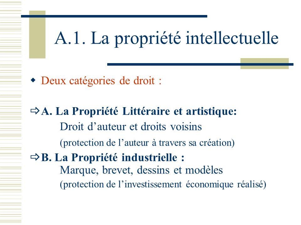 A.1. La propriété intellectuelle