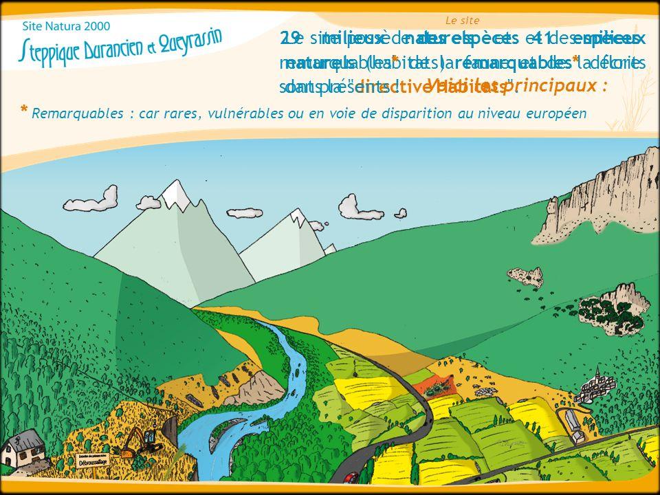 Le site 29 milieux naturels et 41 espèces remarquables* de la faune et de la flore sont présents !
