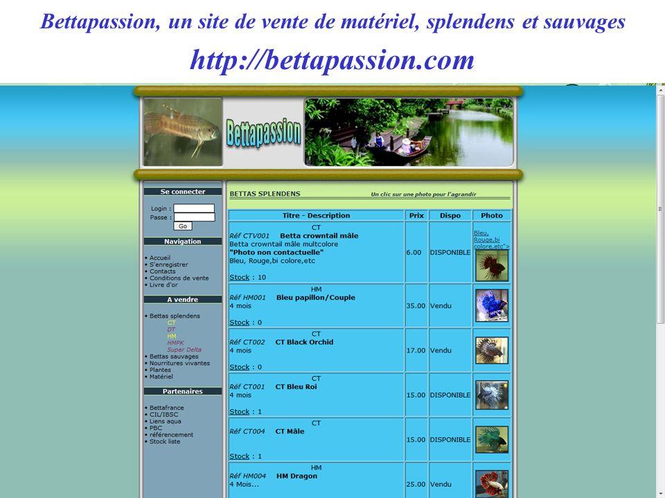 Bettapassion, un site de vente de matériel, splendens et sauvages