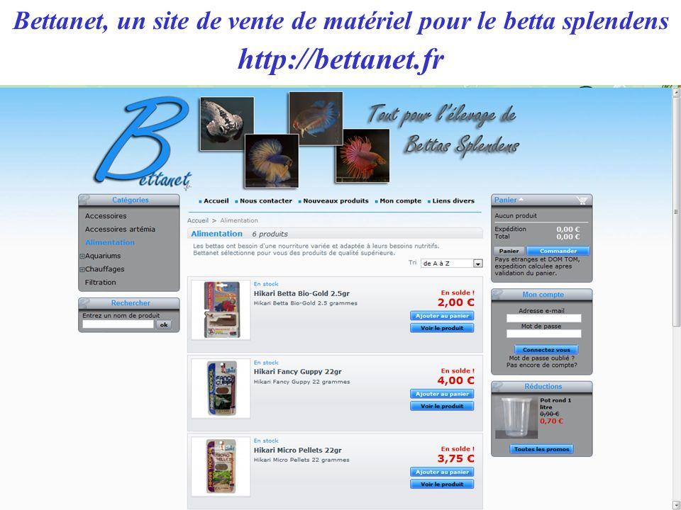 Bettanet, un site de vente de matériel pour le betta splendens