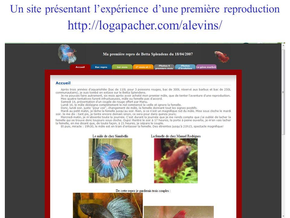 Un site présentant l'expérience d'une première reproduction