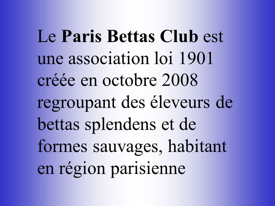 Le Paris Bettas Club est une association loi 1901 créée en octobre 2008 regroupant des éleveurs de bettas splendens et de formes sauvages, habitant en région parisienne