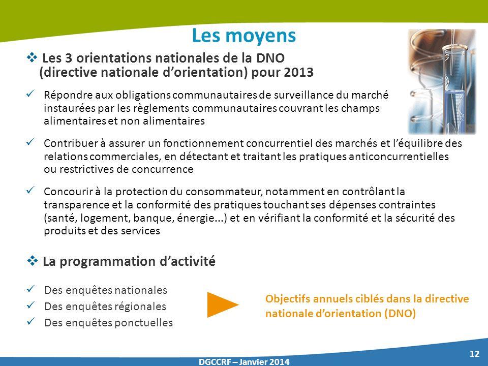 Les moyens Les 3 orientations nationales de la DNO (directive nationale d'orientation) pour 2013.
