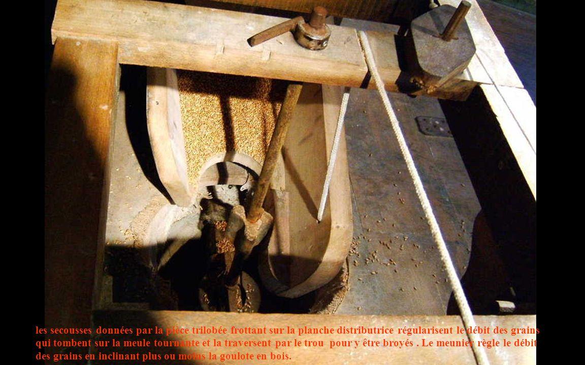 les secousses données par la pièce trilobée frottant sur la planche distributrice régularisent le débit des grains qui tombent sur la meule tournante et la traversent par le trou pour y être broyés .