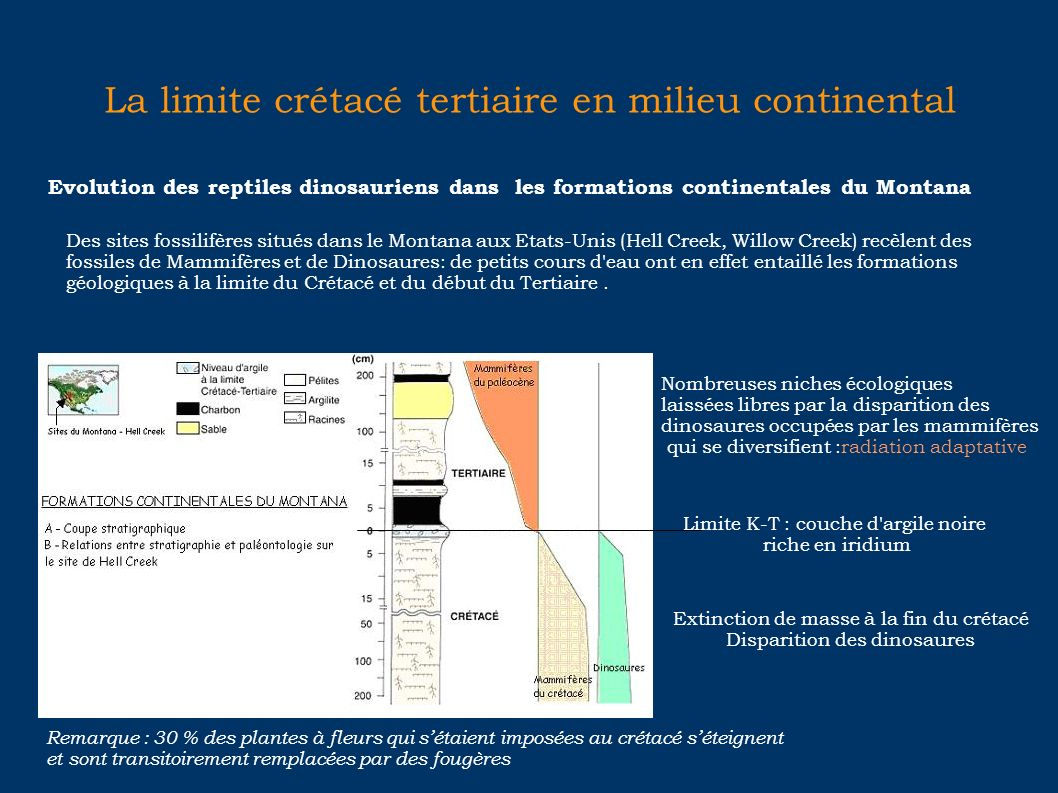 La limite crétacé tertiaire en milieu continental