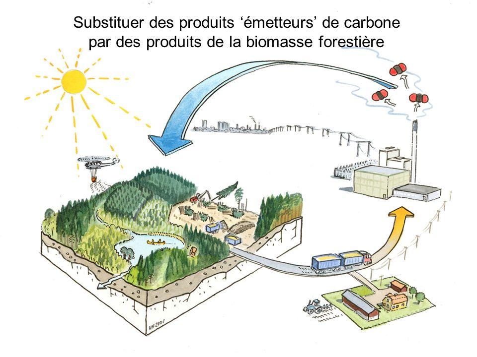 Substituer des produits 'émetteurs' de carbone par des produits de la biomasse forestière