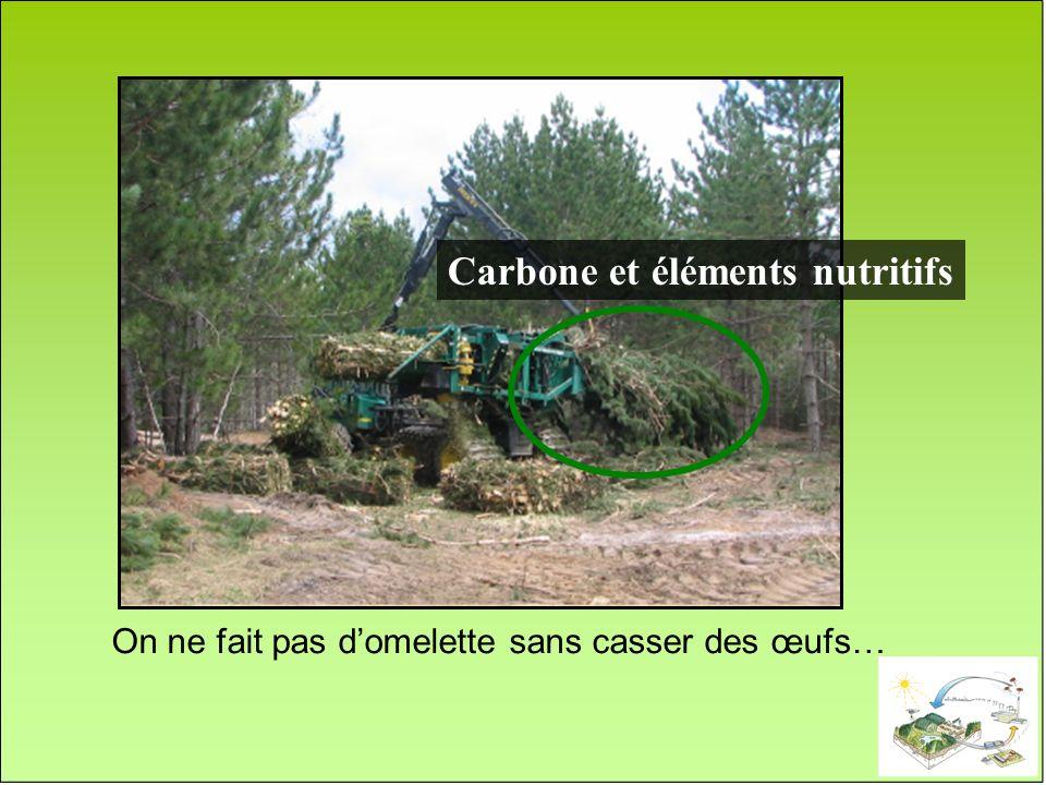 Carbone et éléments nutritifs