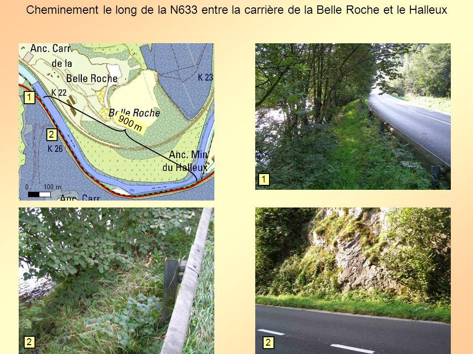 Cheminement le long de la N633 entre la carrière de la Belle Roche et le Halleux