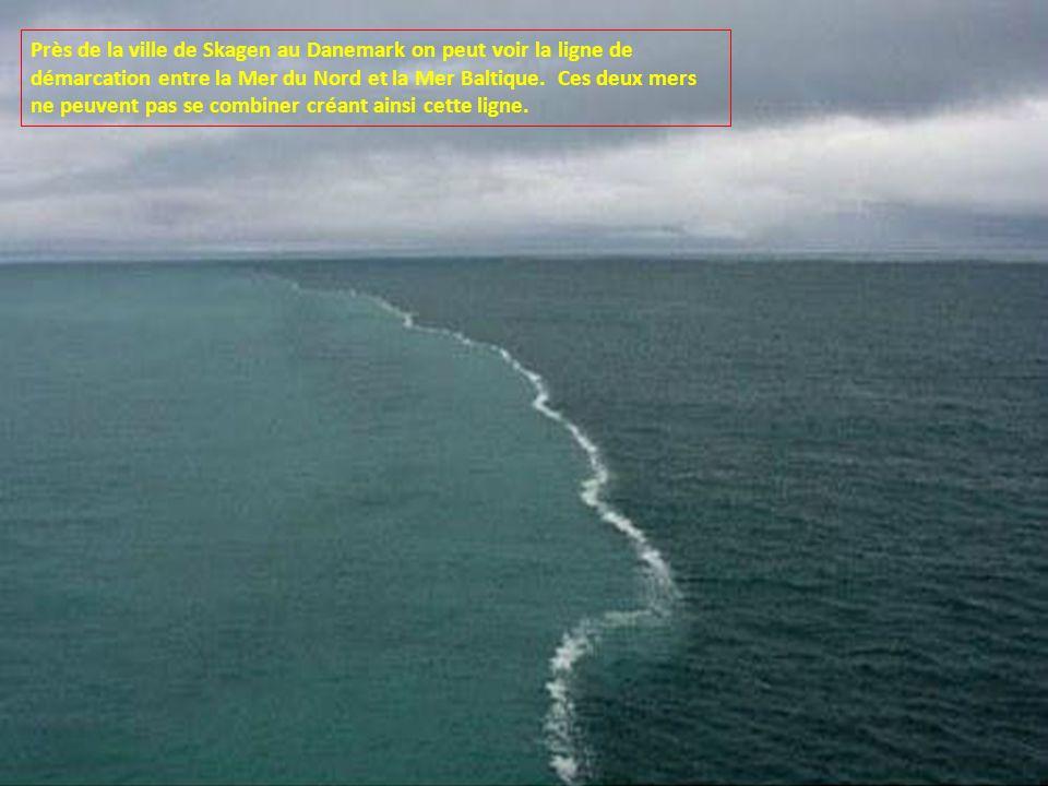 Près de la ville de Skagen au Danemark on peut voir la ligne de démarcation entre la Mer du Nord et la Mer Baltique.