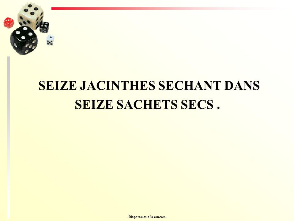 SEIZE JACINTHES SECHANT DANS