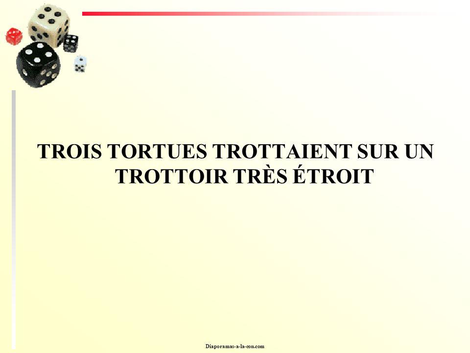 TROIS TORTUES TROTTAIENT SUR UN TROTTOIR TRÈS ÉTROIT