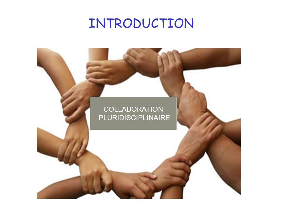 INTRODUCTION COLLABORATION PLURIDISCIPLINAIRE