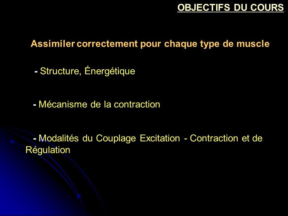 OBJECTIFS DU COURS Assimiler correctement pour chaque type de muscle. - Structure, Énergétique. - Mécanisme de la contraction.