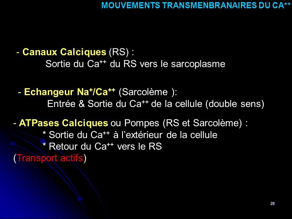 MOUVEMENTS TRANSMENBRANAIRES DU CA++