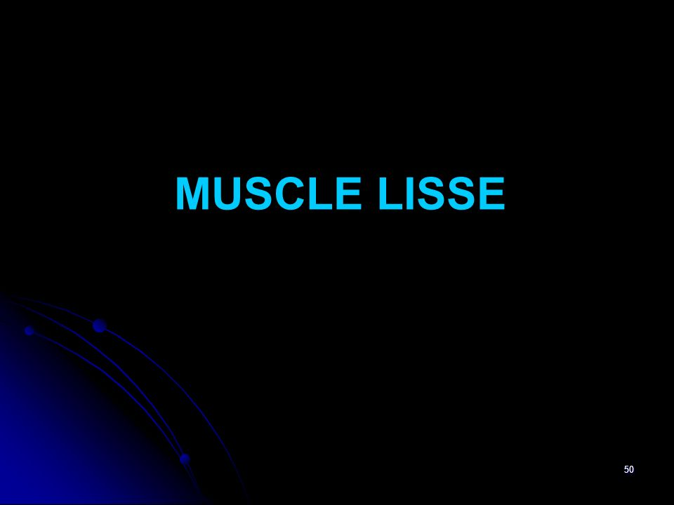 MUSCLE LISSE