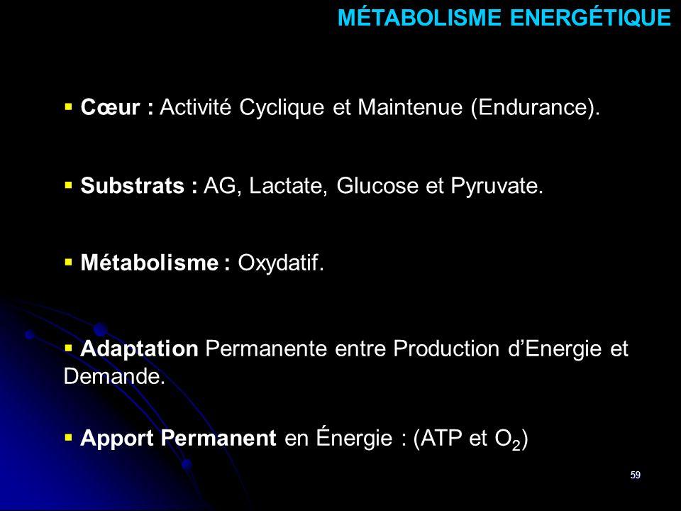 MÉTABOLISME ENERGÉTIQUE