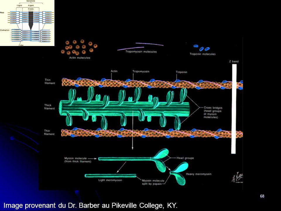 Image provenant du Dr. Barber au Pikeville College, KY.
