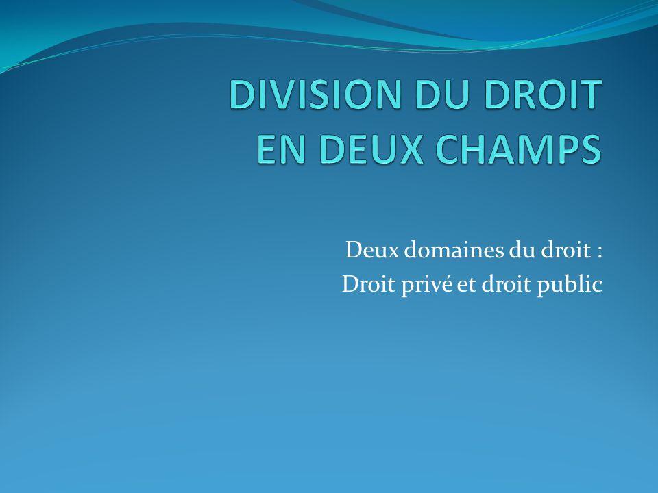 DIVISION DU DROIT EN DEUX CHAMPS