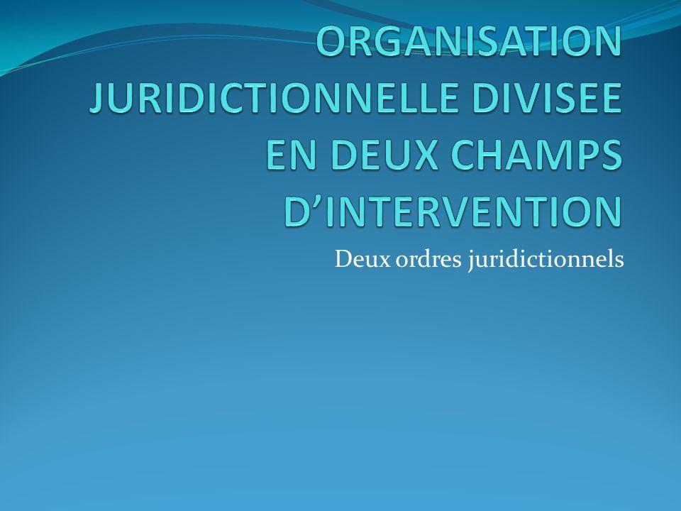 ORGANISATION JURIDICTIONNELLE DIVISEE EN DEUX CHAMPS D'INTERVENTION