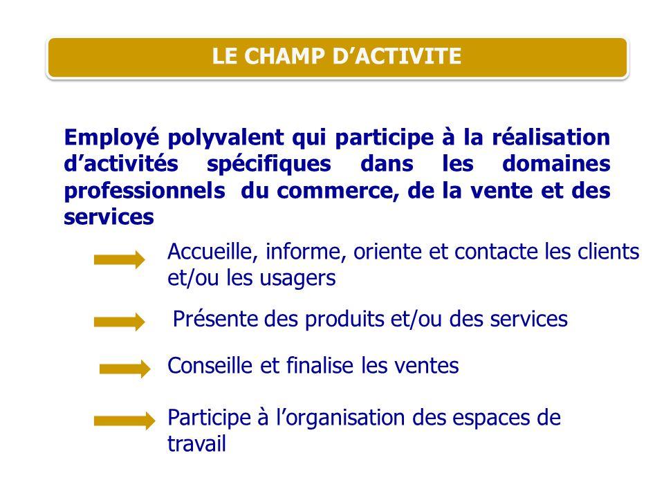 LE CHAMP D'ACTIVITE