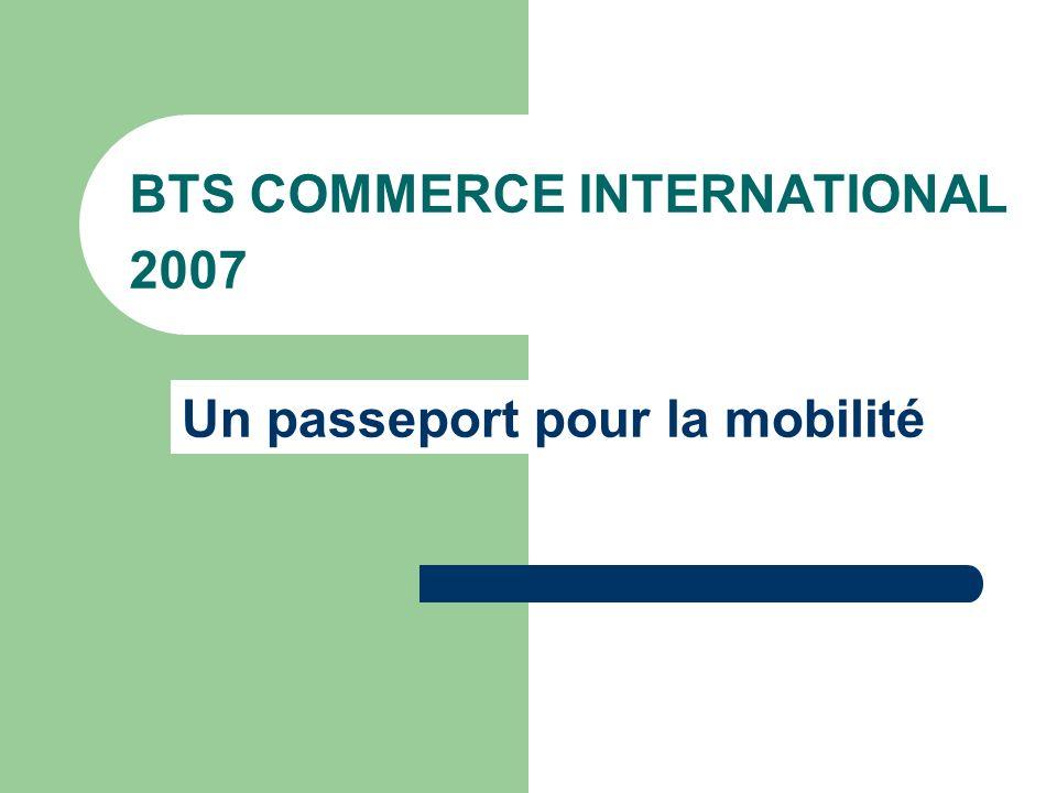 BTS COMMERCE INTERNATIONAL 2007