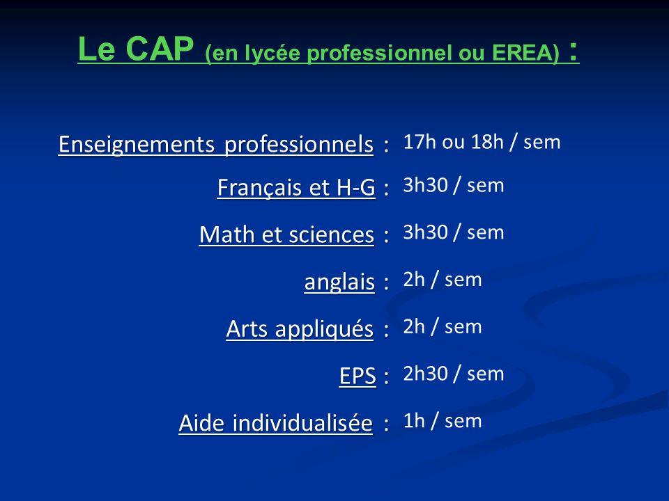 Le CAP (en lycée professionnel ou EREA) :
