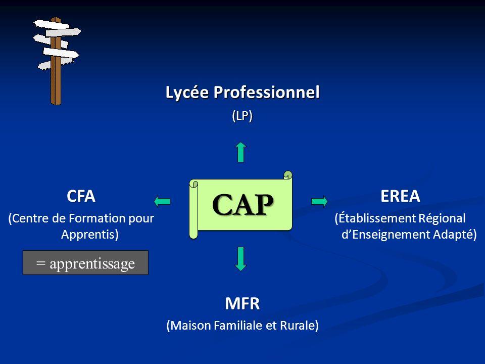CAP Lycée Professionnel CFA EREA MFR = apprentissage (LP)