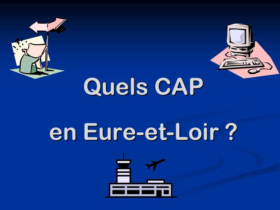 Quels CAP en Eure-et-Loir
