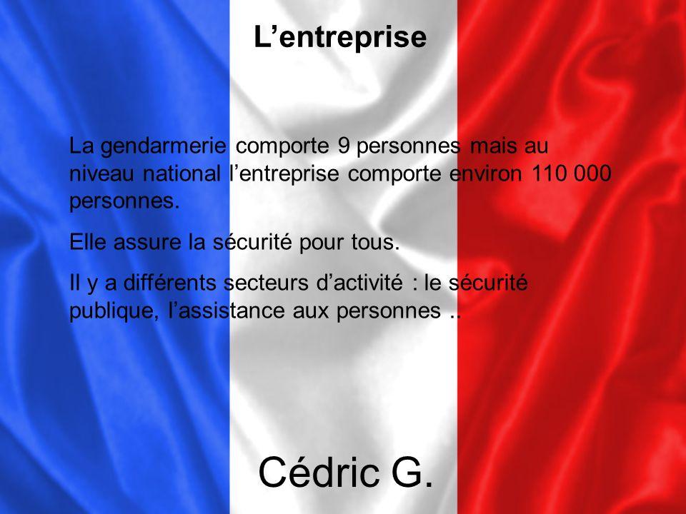 L'entreprise La gendarmerie comporte 9 personnes mais au niveau national l'entreprise comporte environ 110 000 personnes.