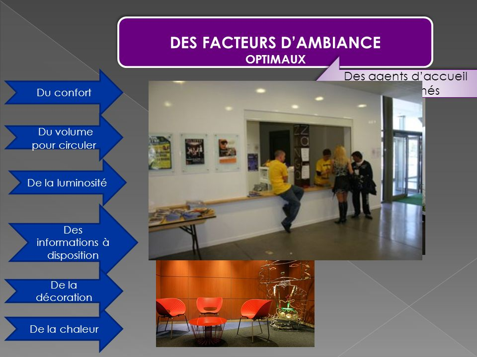 DES FACTEURS D'AMBIANCE