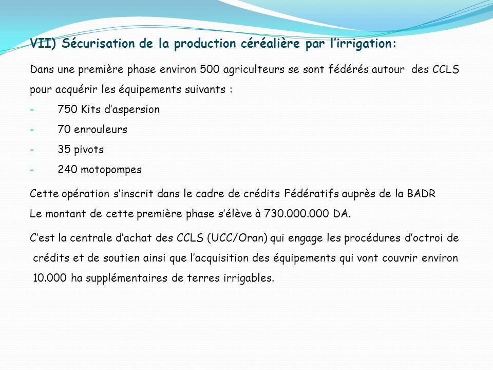 VII) Sécurisation de la production céréalière par l'irrigation: