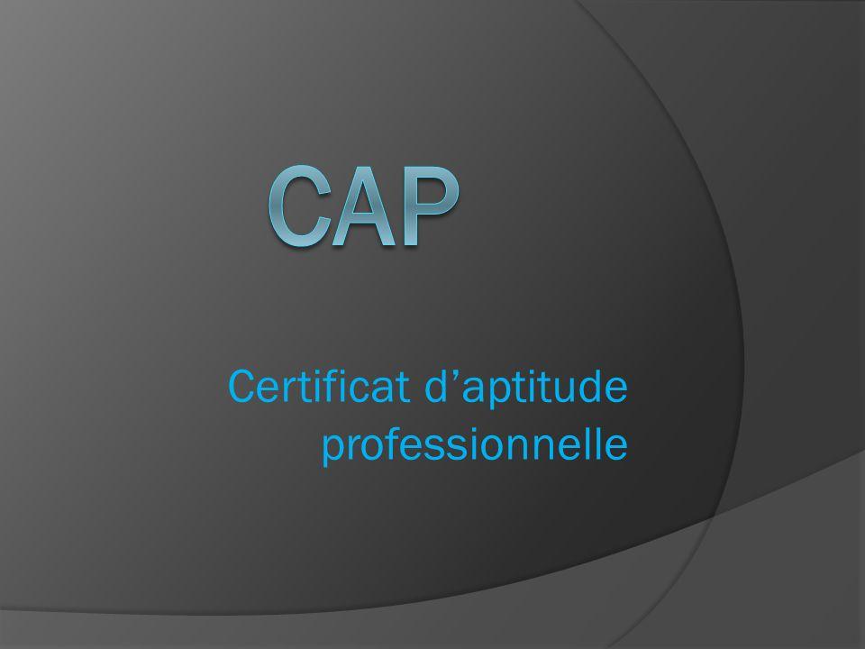 Certificat d'aptitude professionnelle