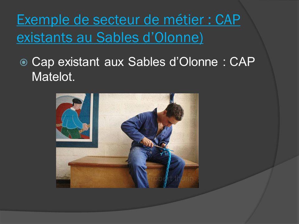 Exemple de secteur de métier : CAP existants au Sables d'Olonne)