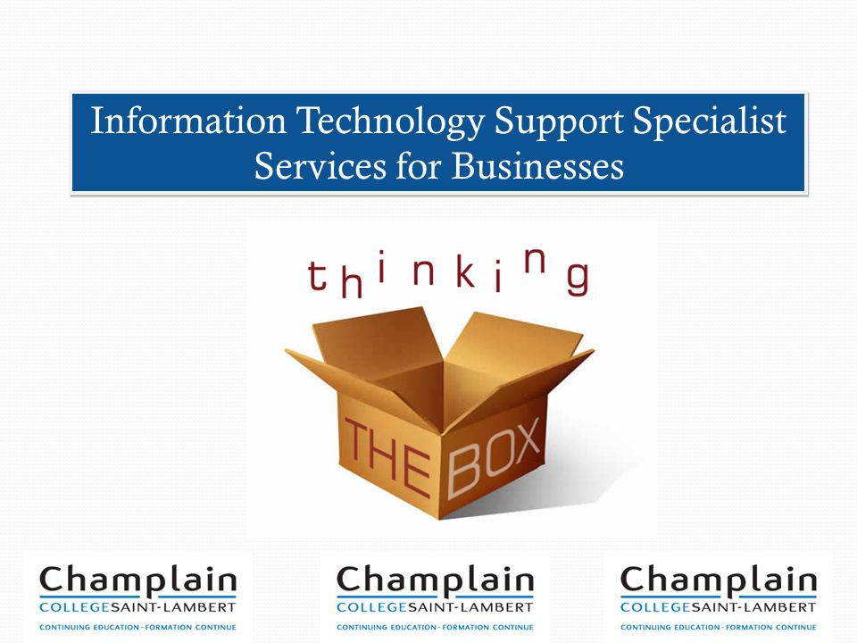 Information Technology Support Specialist Services for Businesses