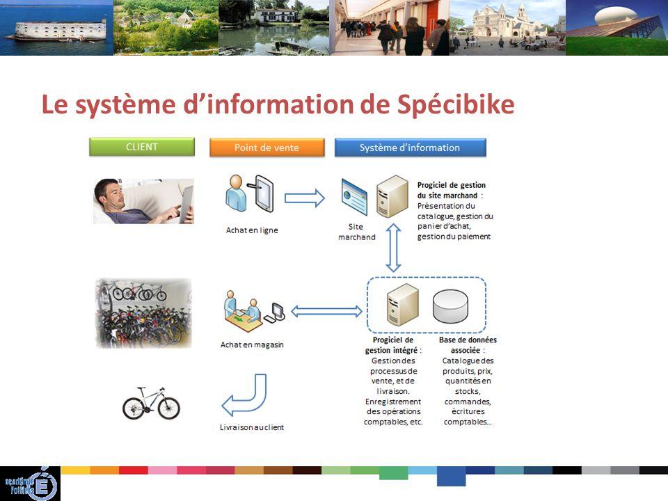 Le système d'information de Spécibike