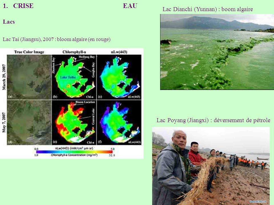 CRISE EAU Lac Dianchi (Yunnan) : boom algaire Lacs