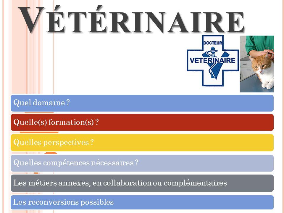 Vétérinaire Quel domaine Quelle(s) formation(s)
