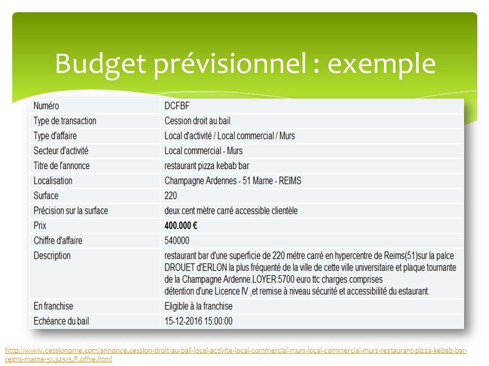 Budget prévisionnel : exemple