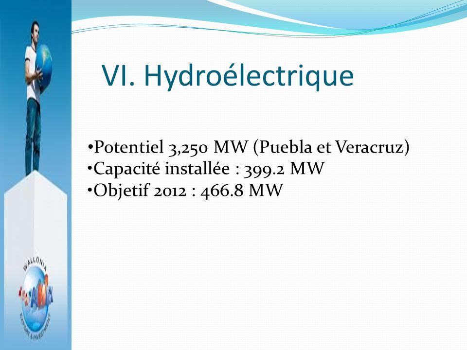 VI. Hydroélectrique Potentiel 3,250 MW (Puebla et Veracruz)
