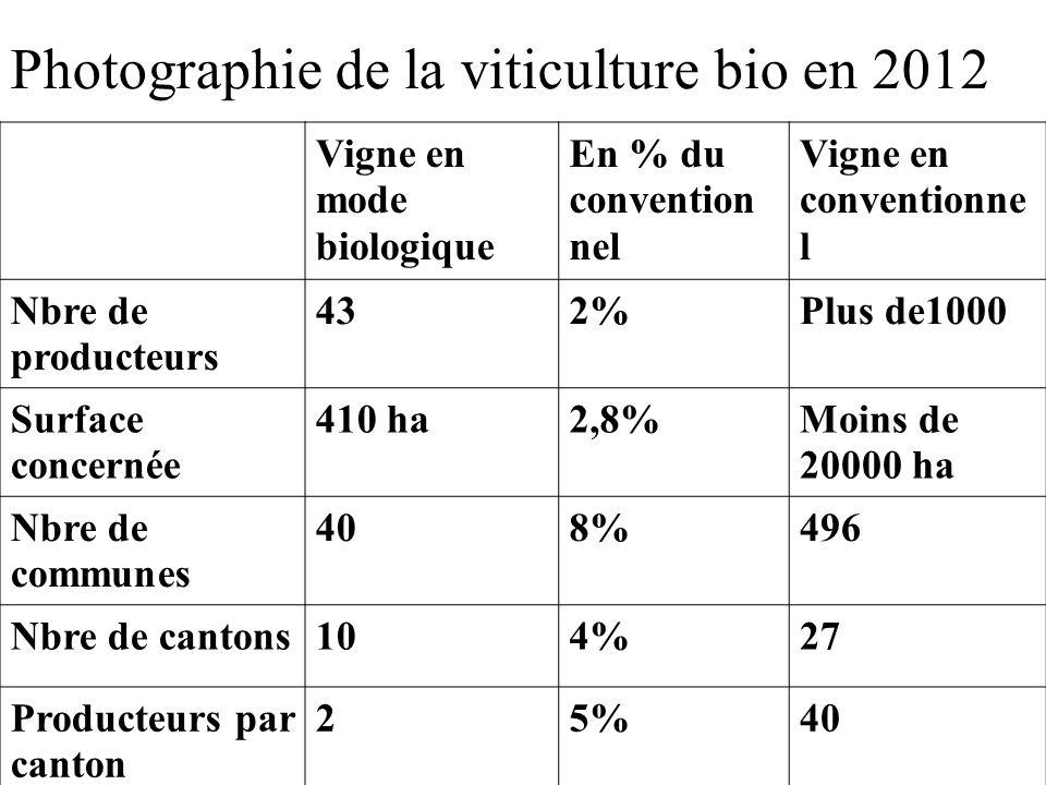 Photographie de la viticulture bio en 2012