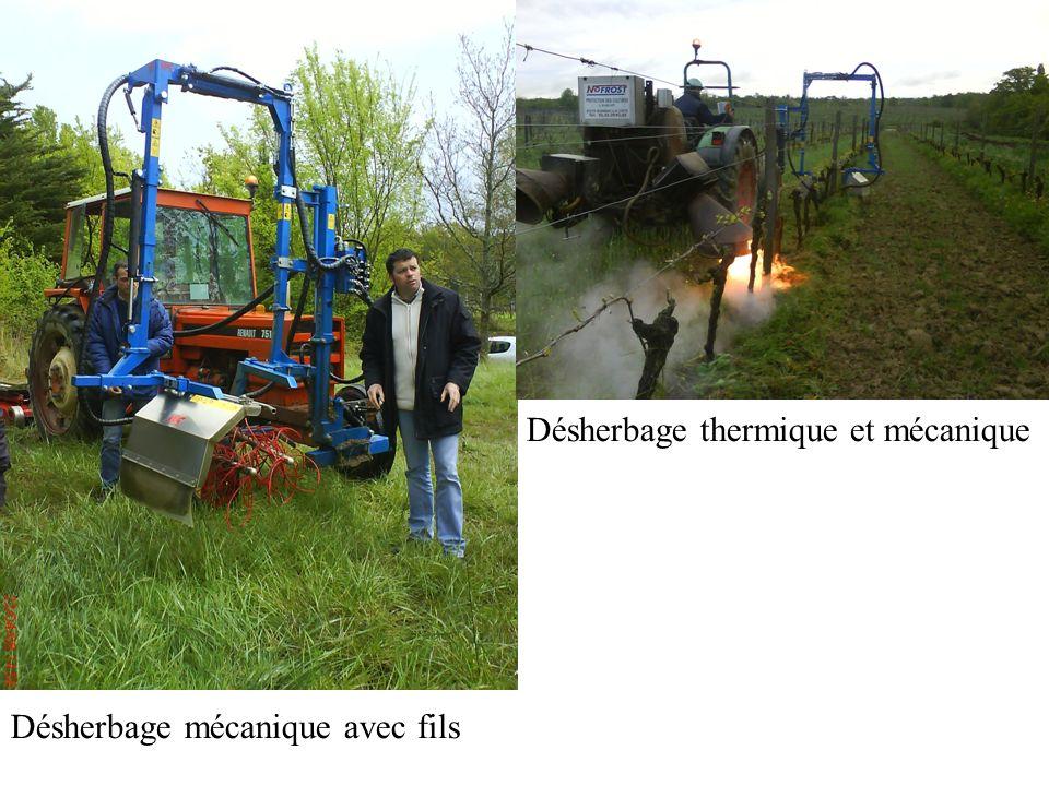 Désherbage thermique et mécanique