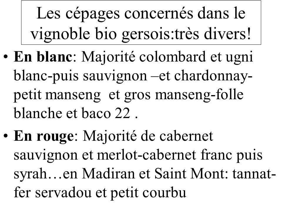 Les cépages concernés dans le vignoble bio gersois:très divers!