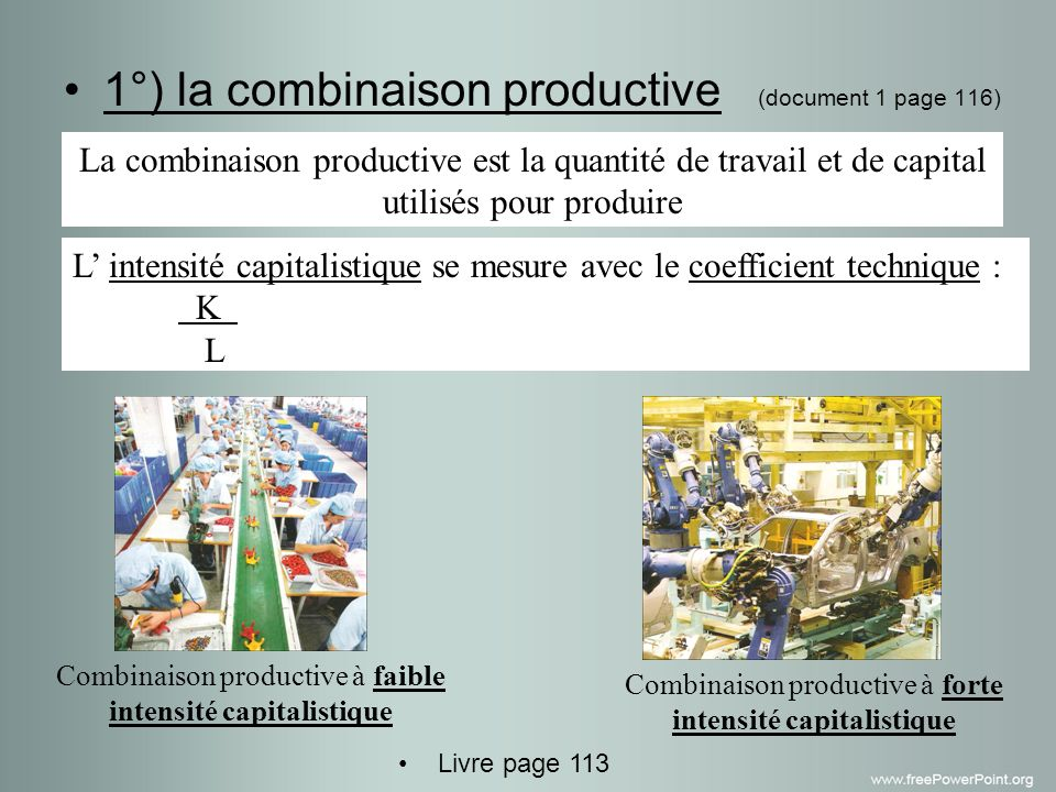 1°) la combinaison productive (document 1 page 116)