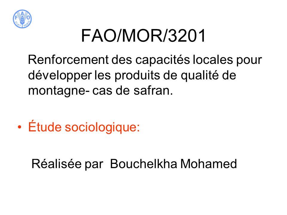 FAO/MOR/3201 Renforcement des capacités locales pour développer les produits de qualité de montagne- cas de safran.