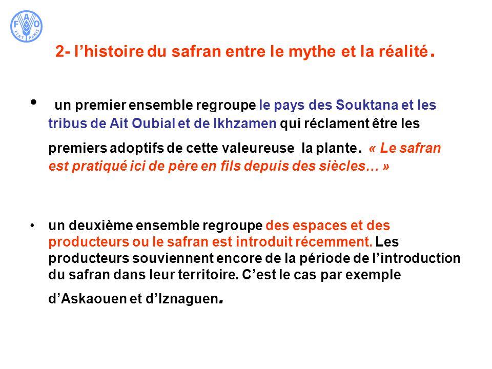 2- l'histoire du safran entre le mythe et la réalité.