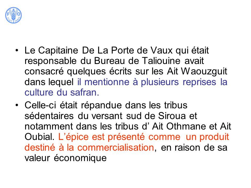 Le Capitaine De La Porte de Vaux qui était responsable du Bureau de Taliouine avait consacré quelques écrits sur les Ait Waouzguit dans lequel il mentionne à plusieurs reprises la culture du safran.