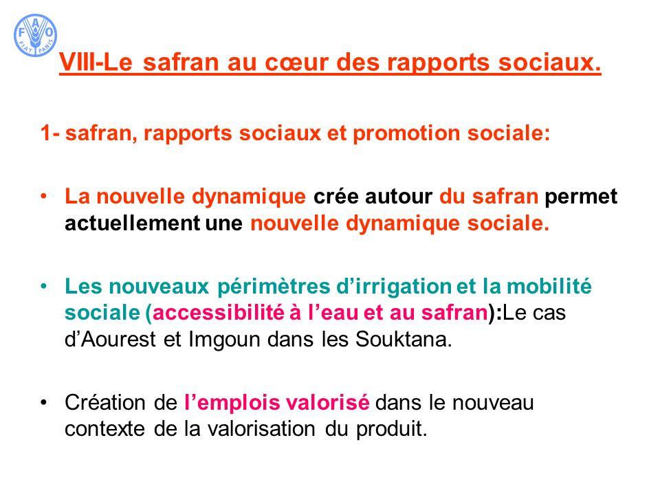 VIII-Le safran au cœur des rapports sociaux.