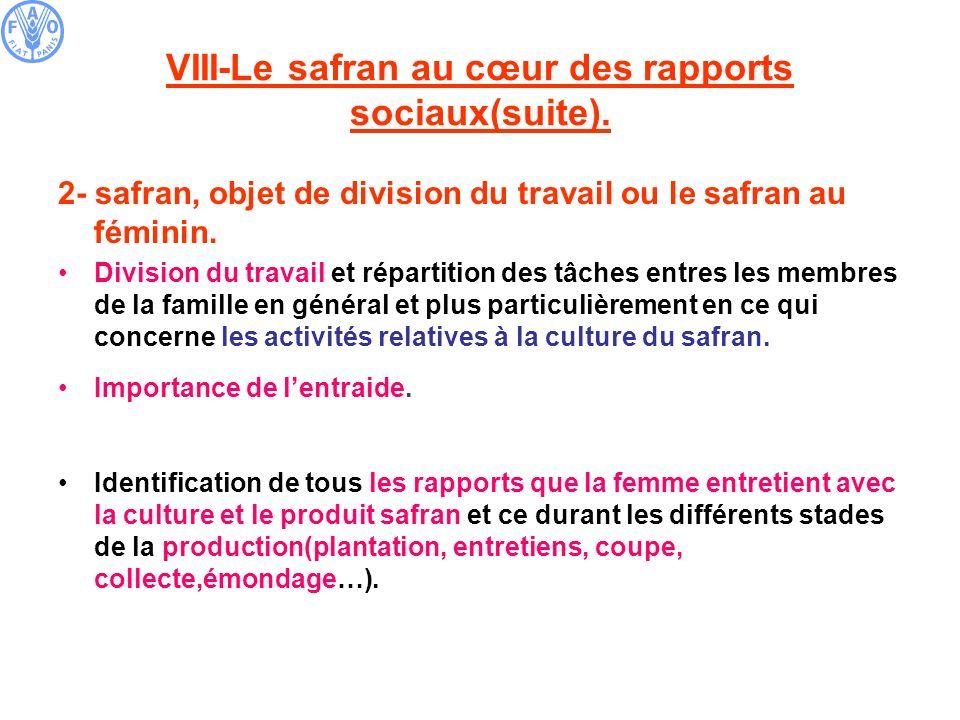 VIII-Le safran au cœur des rapports sociaux(suite).