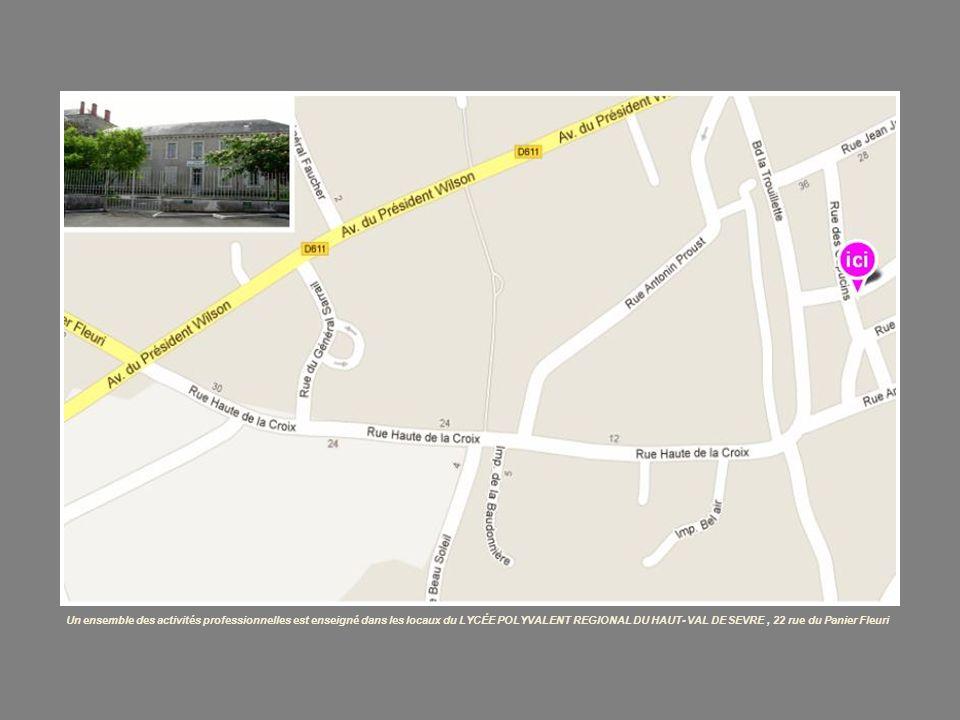 Un ensemble des activités professionnelles est enseigné dans les locaux du LYCÉE POLYVALENT REGIONAL DU HAUT- VAL DE SEVRE , 22 rue du Panier Fleuri