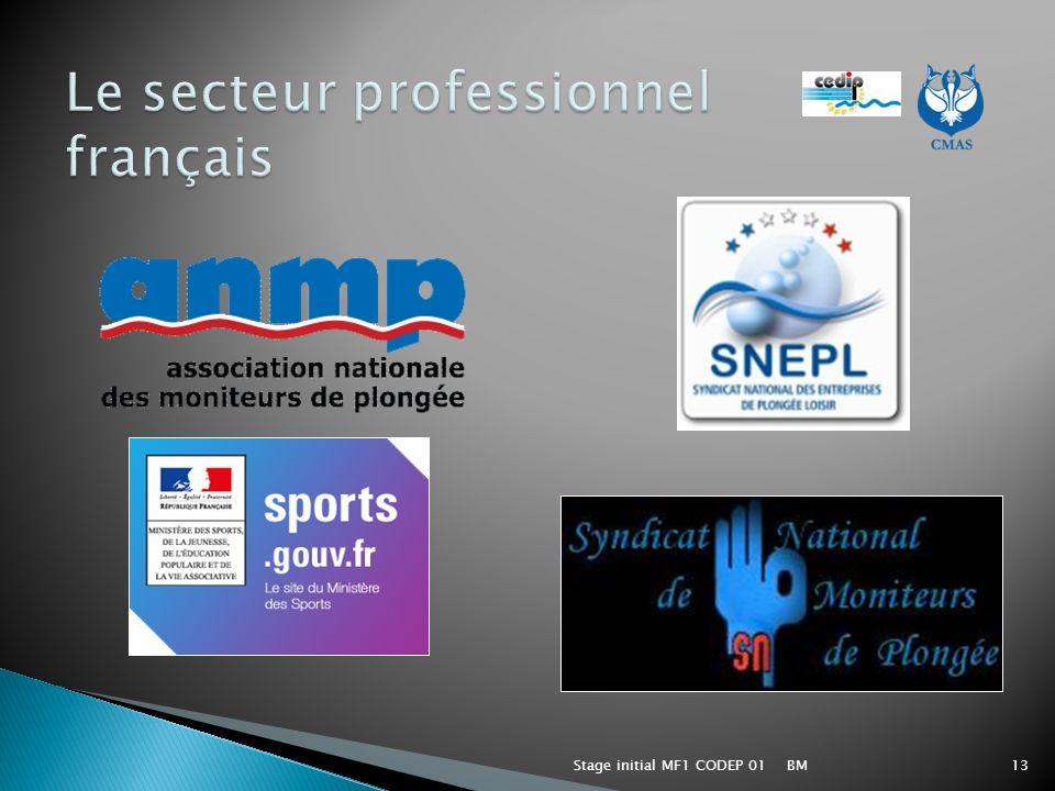 Le secteur professionnel français